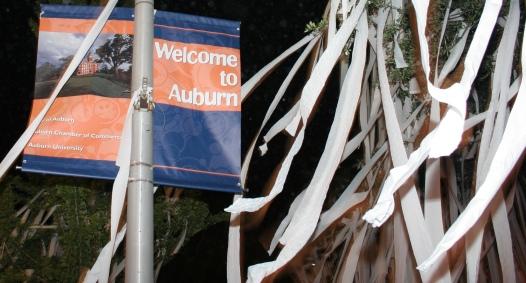welcome-to-auburn.jpg